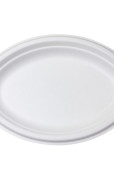 Oval Plate 10 x 7.5 inch